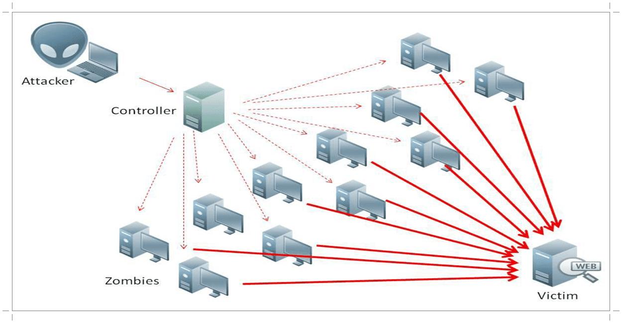 Organized DDoS Attacks
