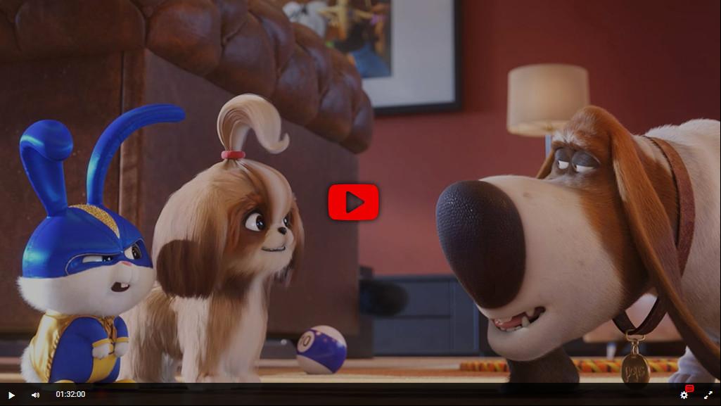 The Secret Life of Pets 2 Película Completa
