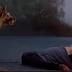ΒΙΝΤΕΟ: Η διαφορά ανθρώπου και σκύλου...
