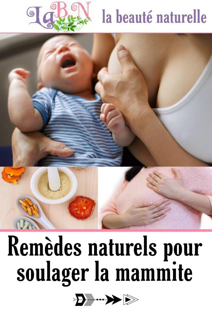 Remèdes naturels pour soulager la mammite