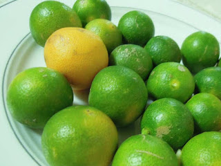 Calamansi Fruit Pictures