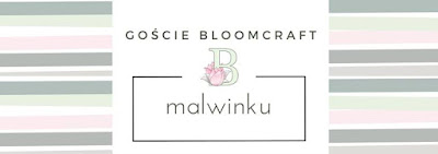 http://bloomcraft.pl/2016/10/20/goscie-bloomcraft-malwinku/