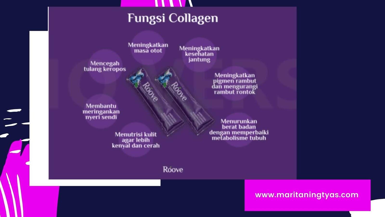 manfaat dan fungsi kolagen