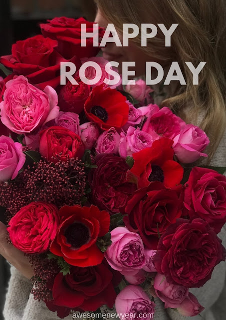 Happy-Rose-Day-photos