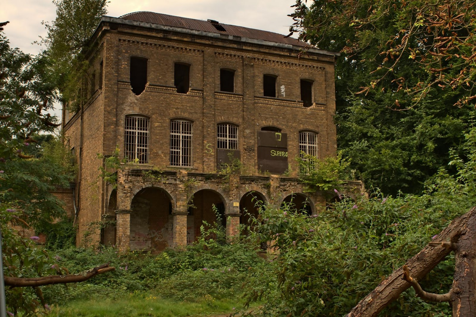 Villa Fühlingen ~ Bildkiste