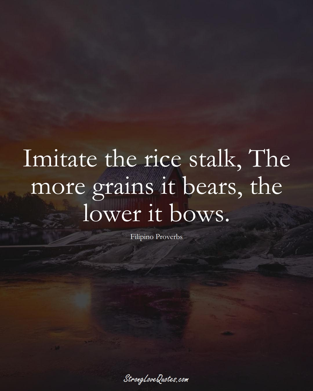 Imitate the rice stalk, The more grains it bears, the lower it bows. (Filipino Sayings);  #AsianSayings