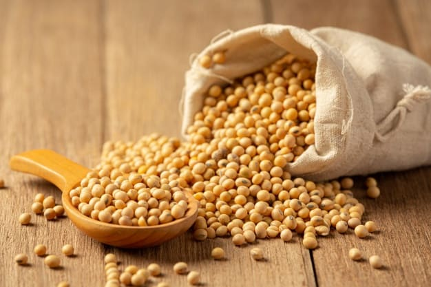 Benefits of soy warrior blood cholesterol