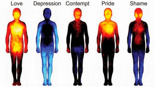 MiguelMartinek : How our emotions Feelings Vibrations Spirit bodies