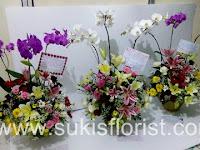 7 Jenis Bunga Asal Jepang Bermakna Historis