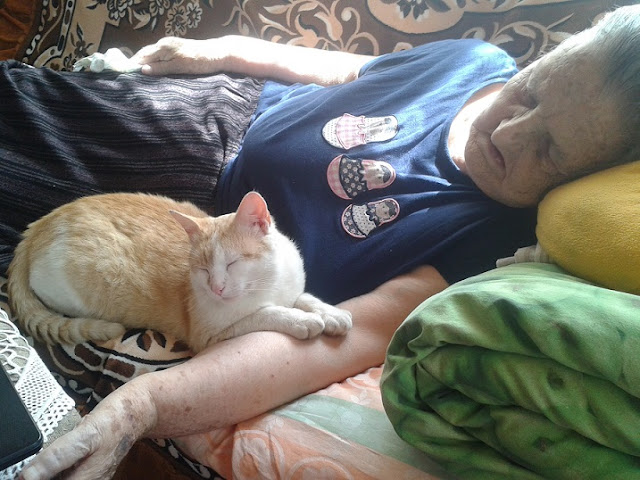 A very ill old woman with a cat on her arm