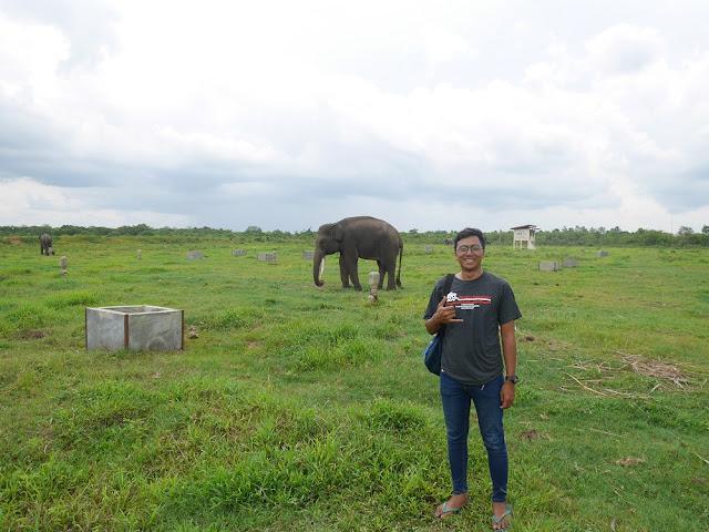 Foto dengan gajah di Way Kambas