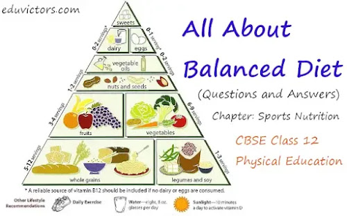 CBSE Class 12 - Physical Education - Chapter: Sports Nutrition - All About Balanced Diet (Questions and Answers)(#class12PhysicalEducation)(#balancedDiet)(#eduvictors)