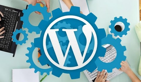 4 Reasons Why You Should Hire WordPress Experts For Your Startup