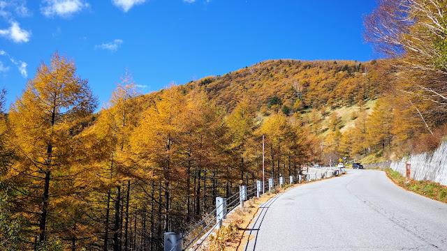 軽井沢から1,000M林道~チェリーパークラインで高峰高原・車坂峠へ。湯ノ丸高峰林道(未舗装路含む)でコマクサ峠・地蔵峠を越え、湯の丸高原から下ってつまごいパノラマライン・愛妻の丘に寄って万座・鹿沢口まで走るサイクリングコース