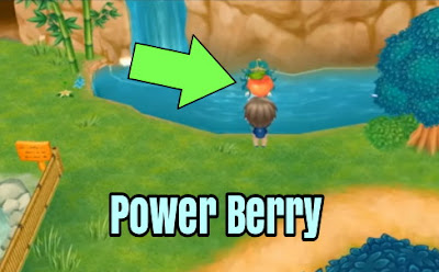 Story of Seasons: Friends of Mineral Town Power Berries