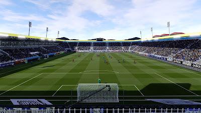 PES 2021 Stadium Swissporarena