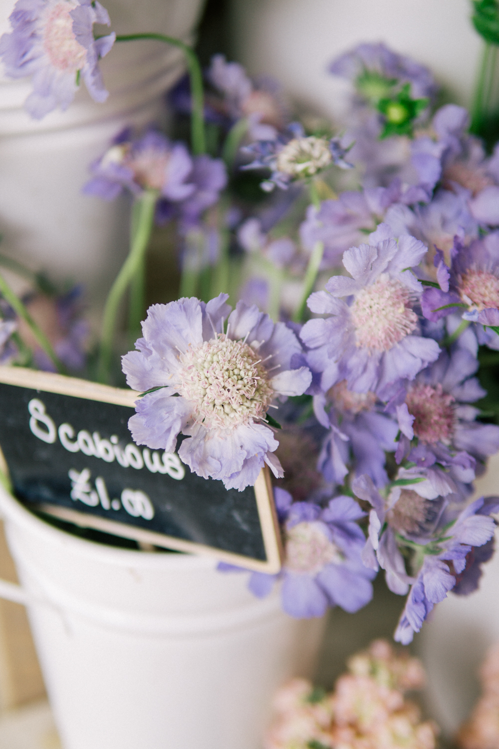 Daylesford-Cotswolds-Barely-There-Beauty-blog-flowers