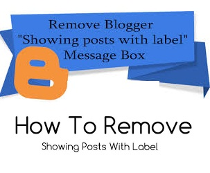 How to Hide Showing Posts with Label Message to Blogger