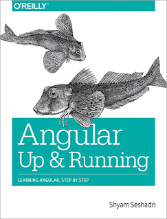best book to learn Angular from scratch