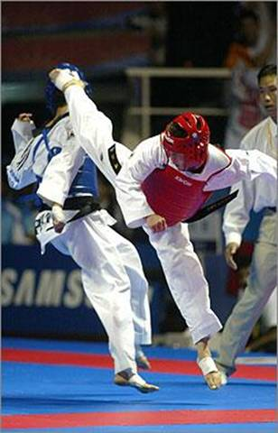Fight Science: Taekwondo
