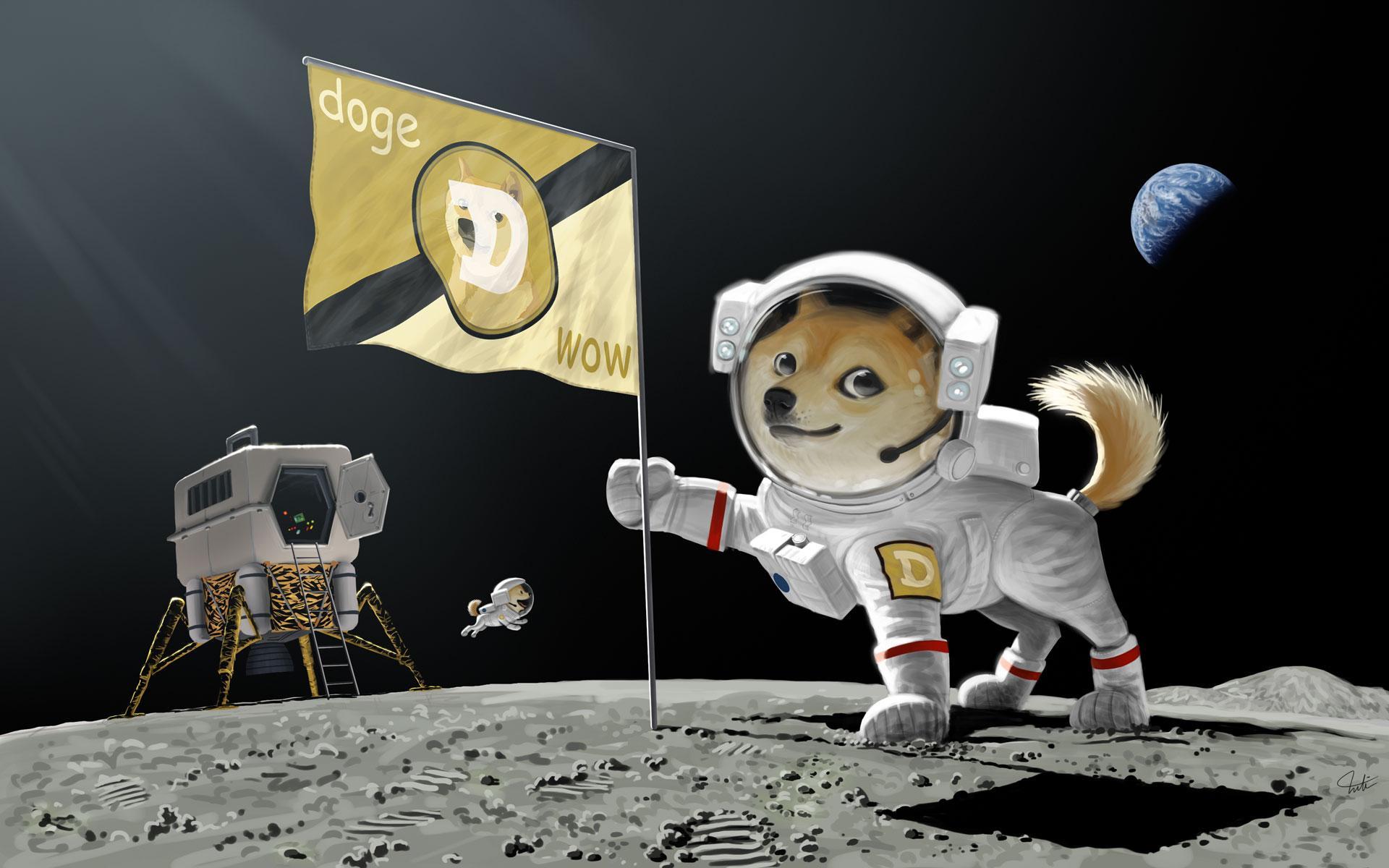 Dogecoin Fiyat Analizi: 19 Ocak