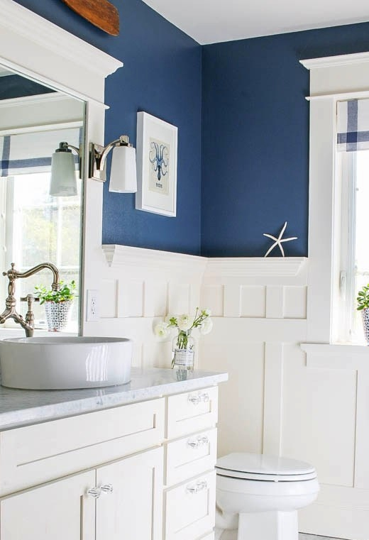 Navy Blue Painted Bathroom Walls