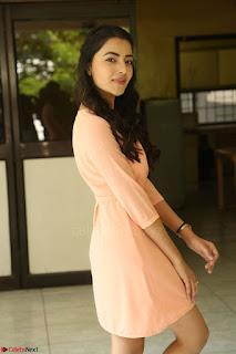 Rukshar Mir in a Peachy Deep Neck Short Dress 125.JPG