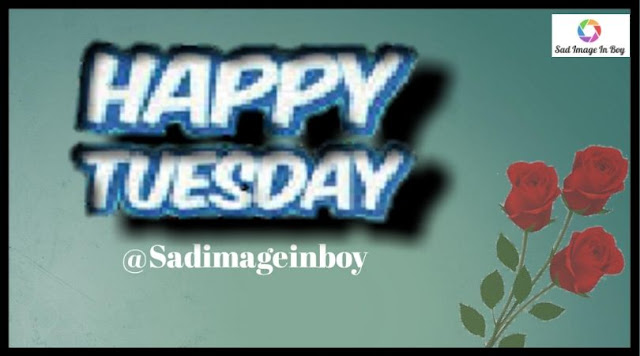 Happy Tuesday images   have a great tuesday, happy tuesday pictures, its tuesday quotes good tuesday