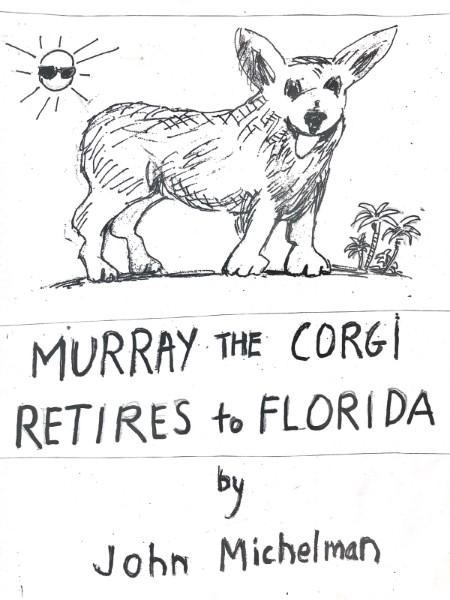 murray the corgi  june 2020