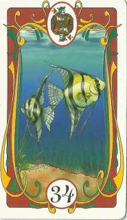Marie's Tarot: Carta n°34 - Os Peixes