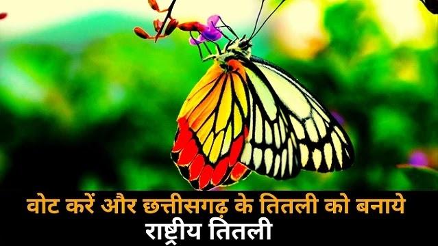 वोट करें और छत्तीसगढ़ के तितली को बनाये राष्ट्रीय तितली | Vote for National Butterfly |