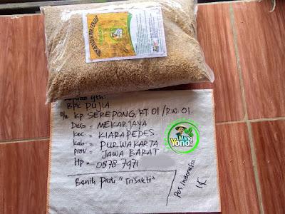 Benih pesana   PUJIA Purwakarta, Jabar   (Sebelum Packing)