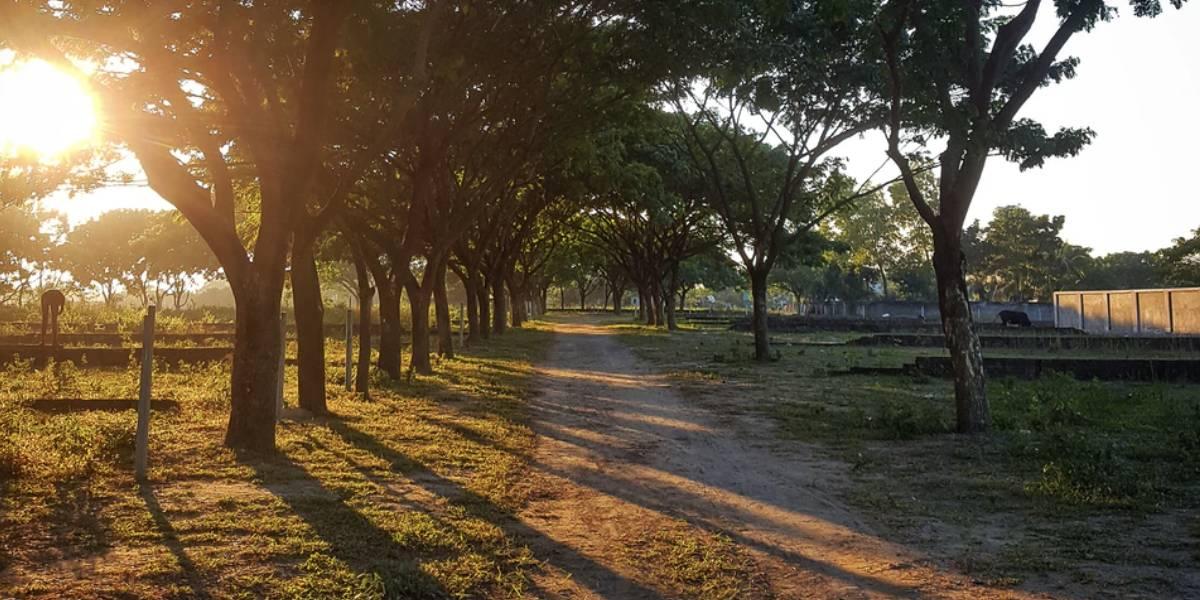 literatura paraibana augusto dos anjos aniversario indiferenca silencio instituicoes