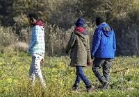 Il existerait 40.000 « mineurs » isolés. Selon Valeurs actuelles, chacun coûterait 50.000 euros par an, montant auquel il faut rajouter les frais d'évaluation de la minorité et ceux de l'éventuel contrat d'apprentissage signé quand le « mineur » atteint 18 ans : 30.000 euros en moyenne.