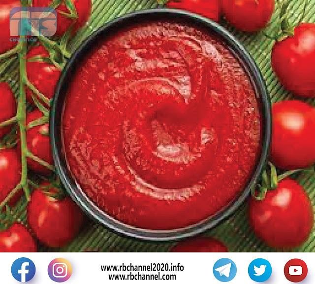 تعليب رب البندورة   خط إنتاج معجون الطماطم