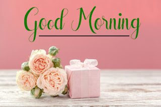 Good Morning Royal Images Download for Whatsapp Facebook55
