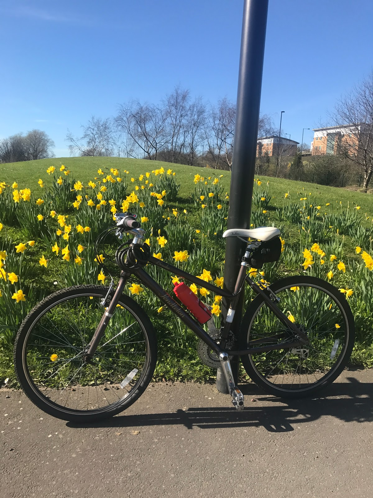 Cycle Diary: My first ride out this year!