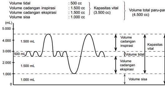 Gambar Grafik Volume Pernapasan