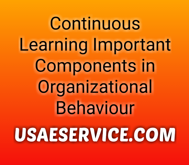 Continuous Learning Components Organizational Behaviour