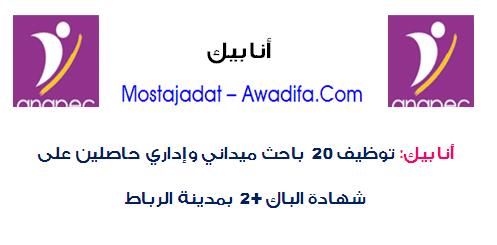 أنابيك: توظيف 20 باحث ميداني وإداري حاصلين على شهادة الباك+2 بمدينة الرباط