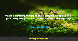 """I am a mystery wrapped in an enigma wrapped in a pita. Why the pita? That counts as another mystery.""  ― Demetri Martin"