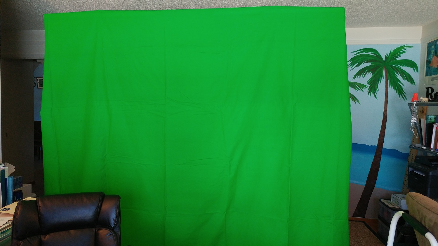 How To Use Green Screens With Zoom The Channelpro Network