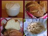 Pan de Okara