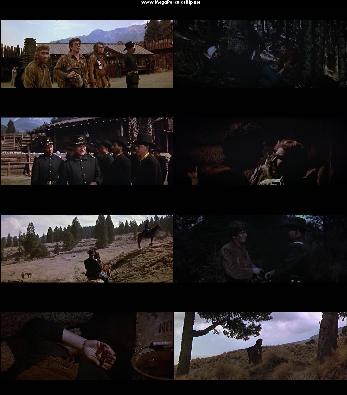 Desierto Salvaje 1080p Latino