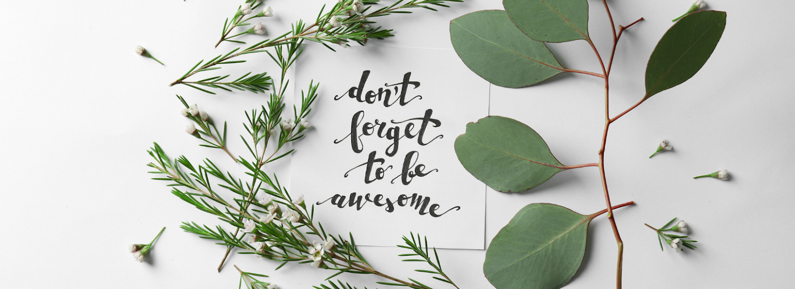 Photo of quote saying don't forget to be awesome