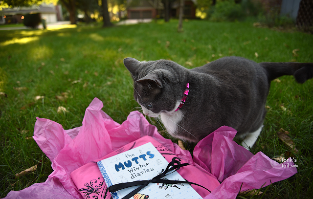 Allie investigates the new Mutts Winter Diaries book by Andrews & McMeel