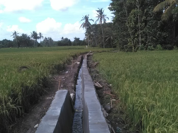 Lagi Proyek P3A TGAI Bantuan Kemterian PUPR di Banyuwangi, Tanpa Papan Nama