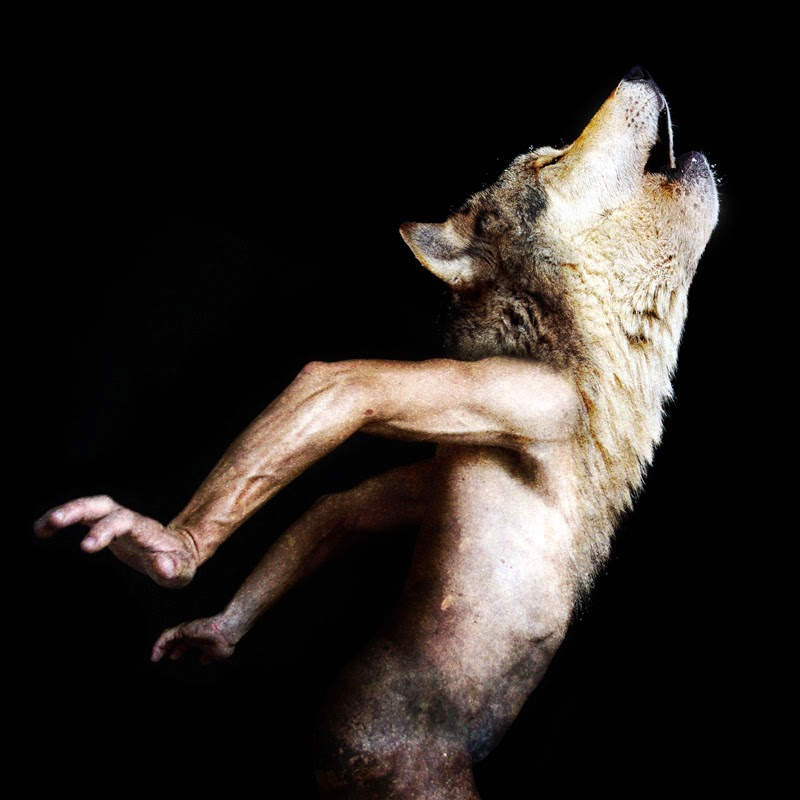 12-Francesco-Sambo-Man-Animal-Hybrids-Mashup-Photography-www-designstack-co