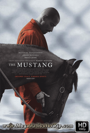 The Mustang [1080p] [Latino-Ingles] [MEGA]