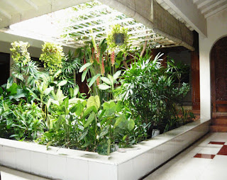 Creating a backyard garden Design minimalist house latest